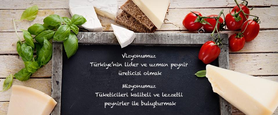 VİZYON & MİSYON